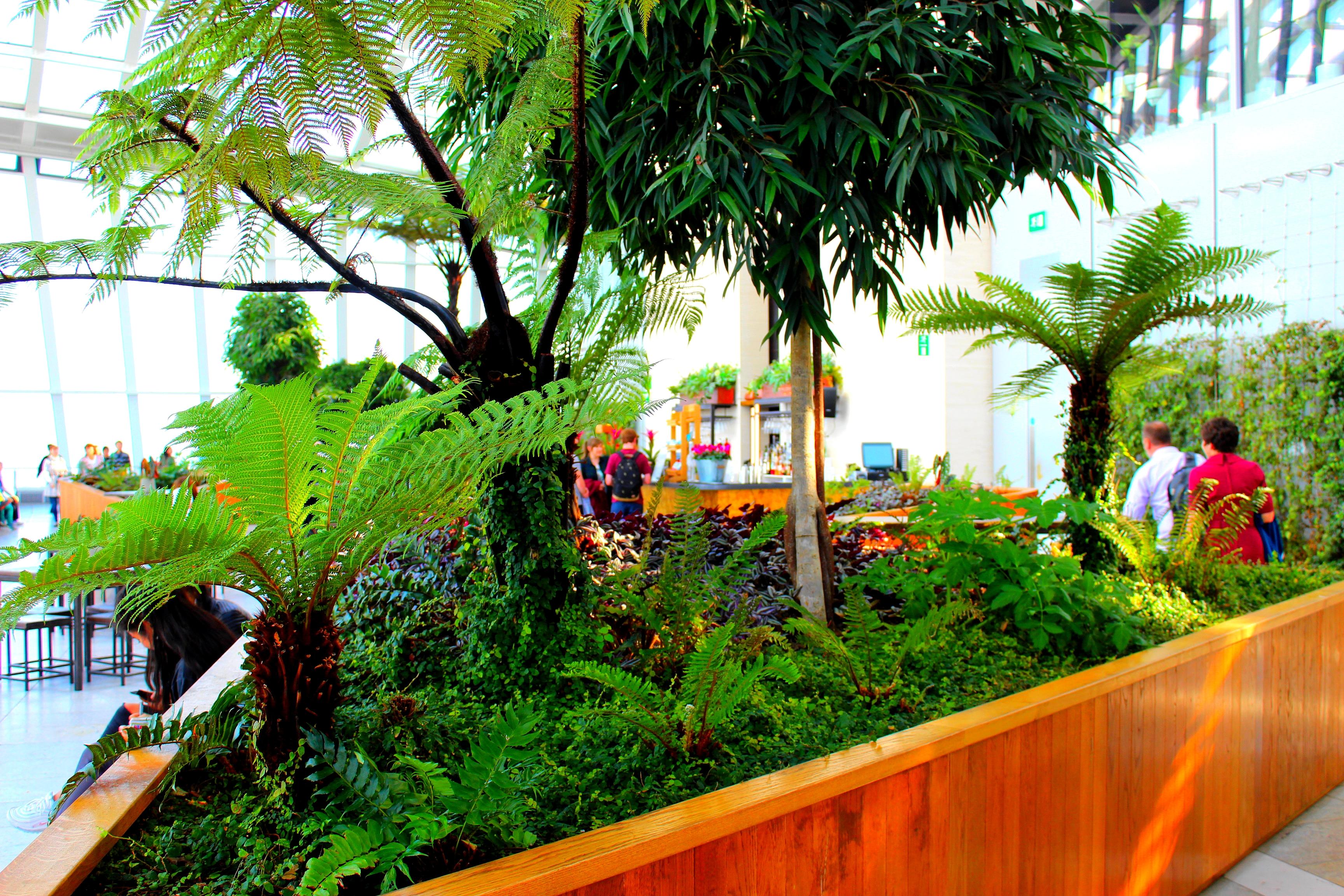Bar proche des plantes